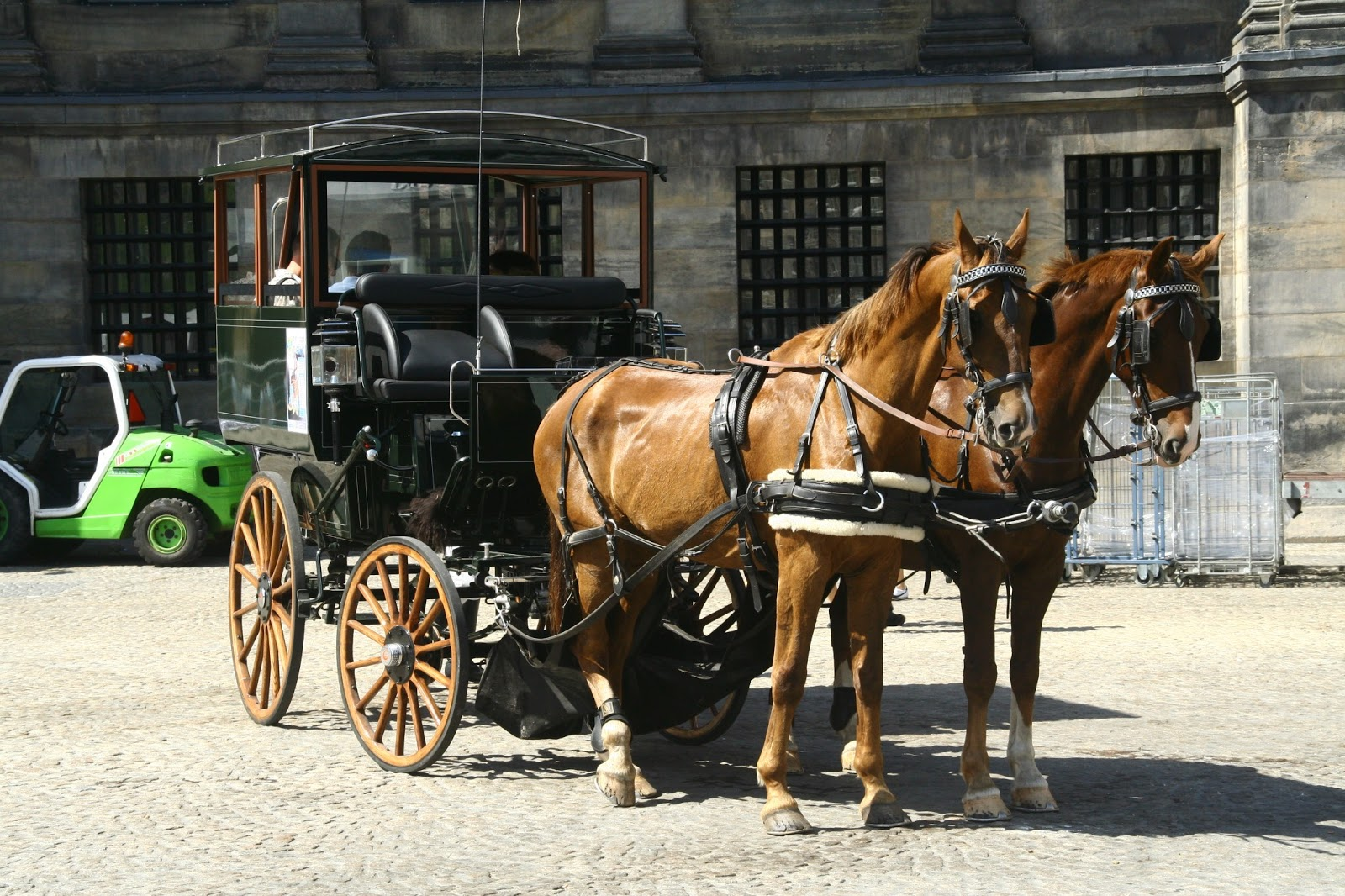 Amazenglish crazy laws from around the world for Car carriage