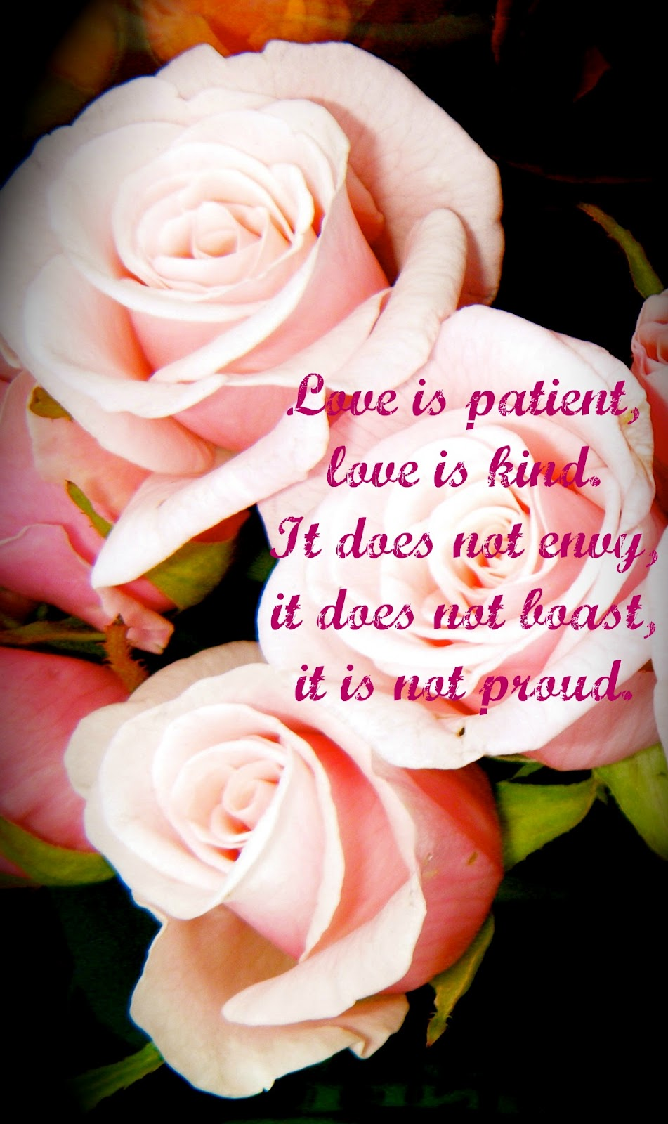 Love Is Patient Love Is Kind Quote Quotes About Love Love Is Patient Love Is Kind Quote