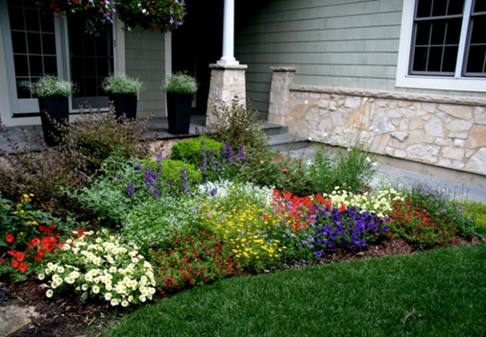 Small garden ideas plants photograph small front garden fu for Front yard landscaping plants