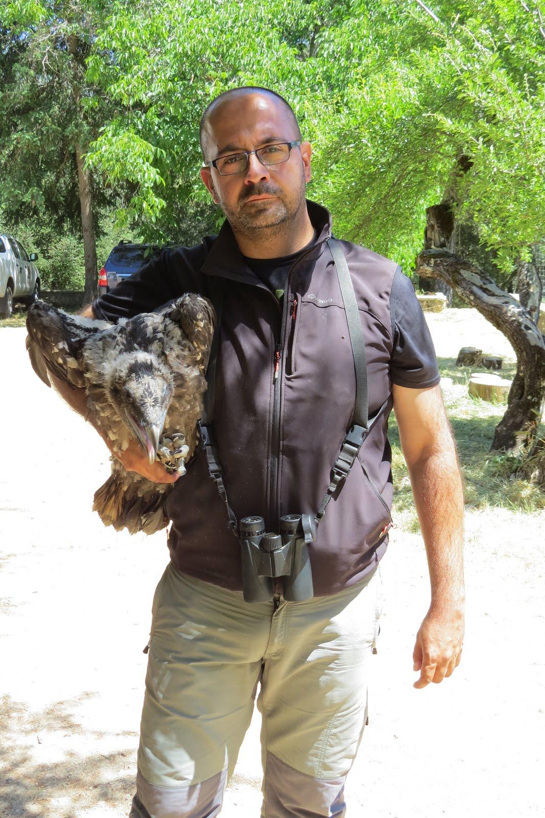 Mi candidatura a la Junta Directiva de SEO/BirdLife