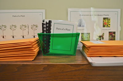 Montessori Elementary Botany Nomenclature Materials