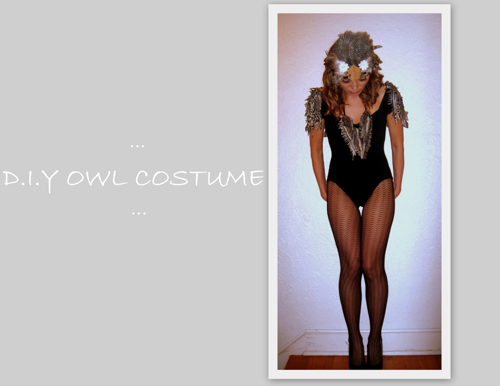 Sexy owl costumes