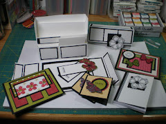 Stationary Box Set
