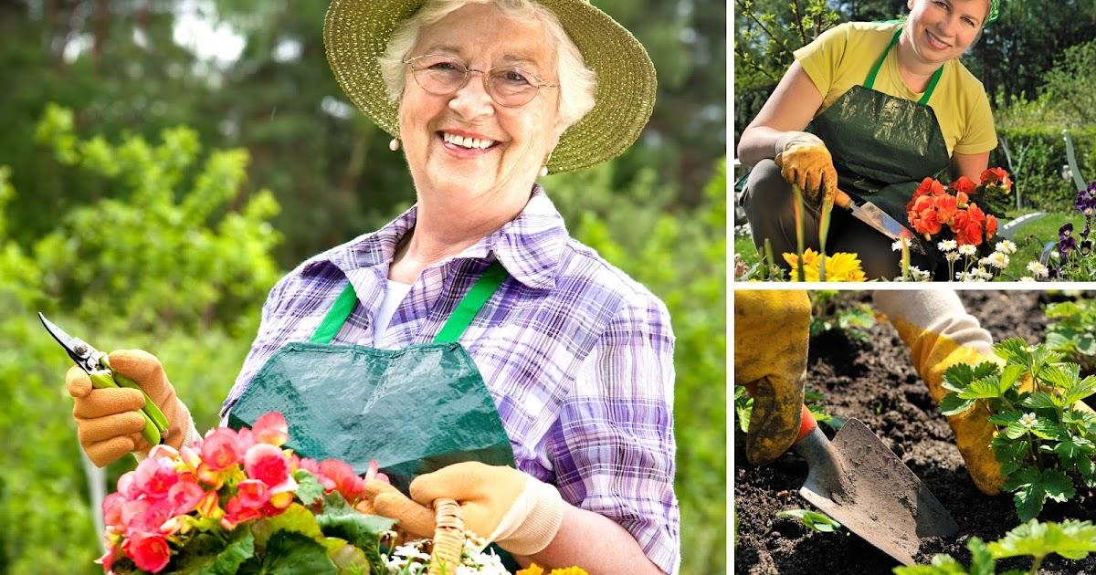 Banco de im genes gratis fotos de jardiner a para sitios for Imagenes de jardineria gratis