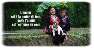 Citation D Amitie Poeme D Amitie Phrase D Amitie Proverbe D Amitie
