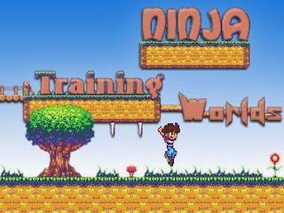 http://www.juegosdiarios.com/juegos/ninja-training-worlds.html