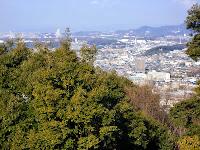 東谷山山頂の眺望