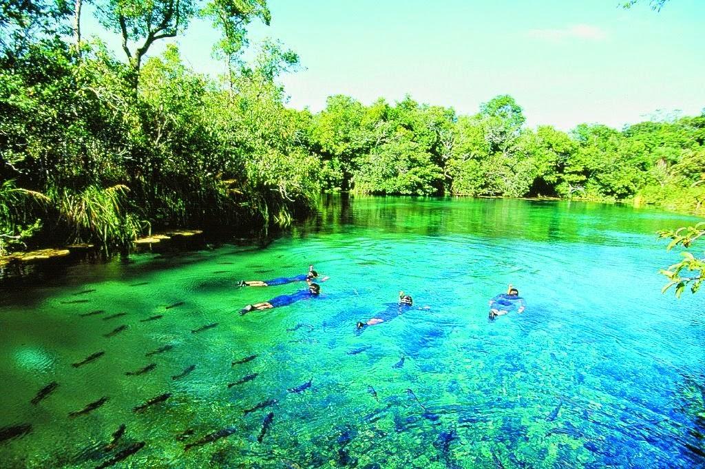 Bonito, pantanal MS - Pousadas e Passeios