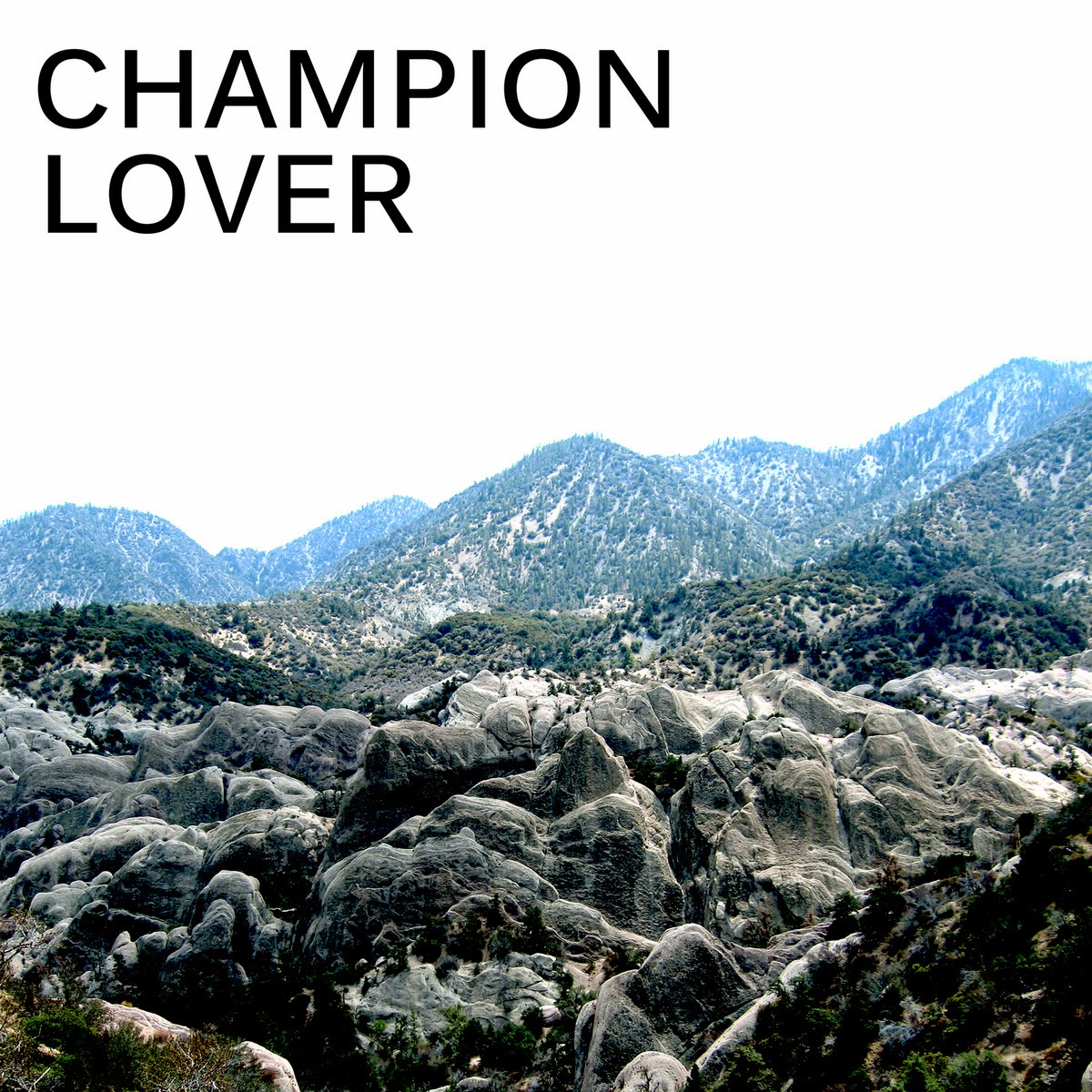 http://www.d4am.net/2014/06/champion-lover-champion-lover.html