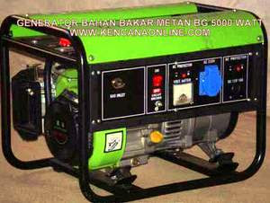 Biogas Electrical Machine BG 5000W