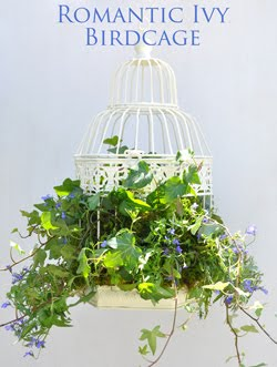 Romantic Ivy-Filled Birdcage