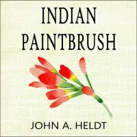 Indian Paintbrush (Audiobook)