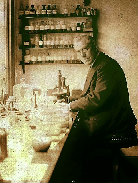 Martinus Willem Beijerinck, a botanist and microbiologist.