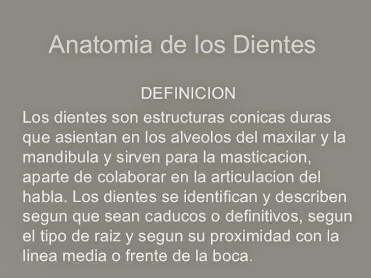 Embriologia & Odontologia : Anatomia de los Dientes