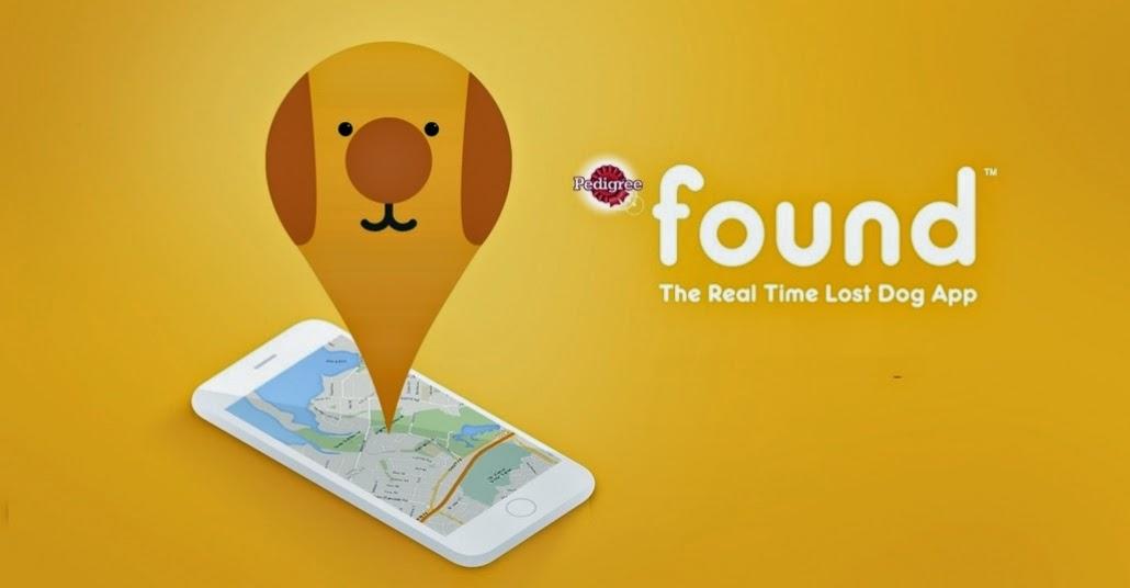 kayıp köpek ilanı, kayıp köpek, kayıp hayvan duyurusu, kayıp hayvan bulma, hayvan uygulaması, hayvanseverler, mobil uygulama found