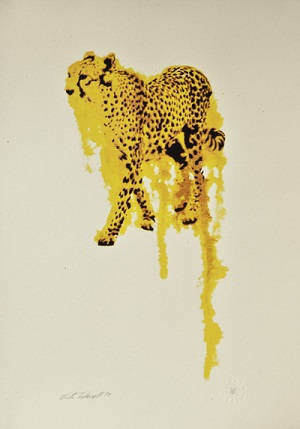 Cheetah Flow by Nicole Tattersall