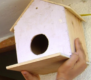 sparrow breeding nest box india