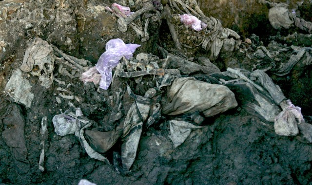 Srebrenica Genocide Blog: TWO SEPARATE TRIALS FOR MLADIC, BUT FIRST ...
