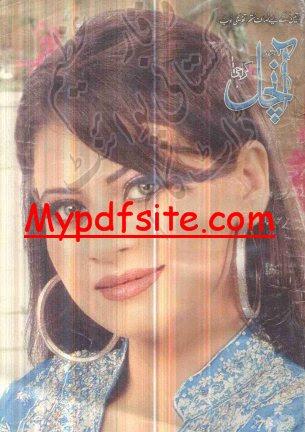 Aanchal Digest December 2008