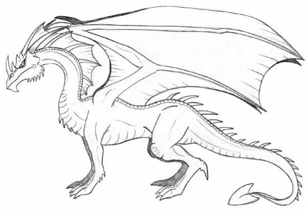 Dibujo Lapiz Dragon Dibujos de Dragones