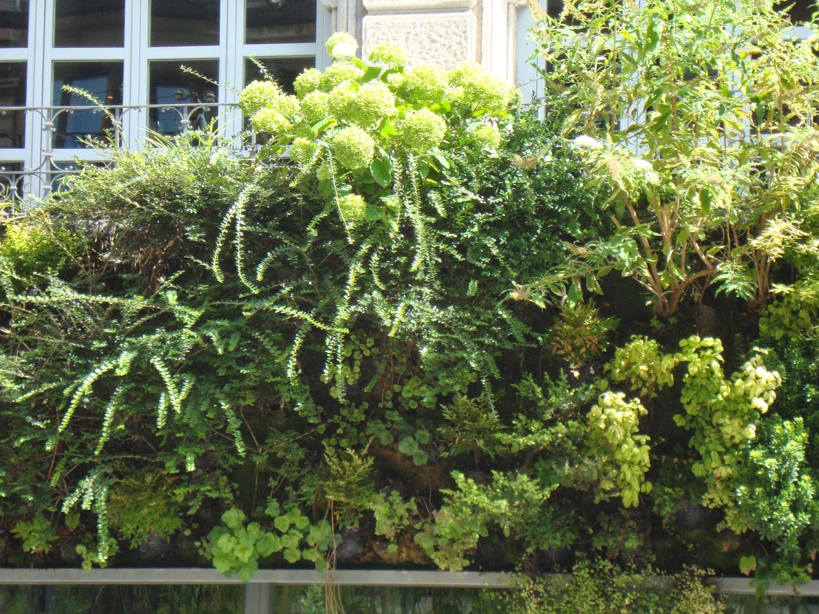 Un piccolo giardino in città: Il giardino verticale di Patrick Blanc a Milano