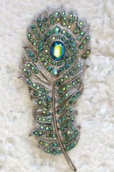 Trovare una piuma di pavone porta fortuna l armonia la - Immagini pavone a colori ...