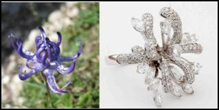 Entice jewellery collection 2013: Flower Inspired Jewellery