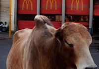 McDonald's abrirá lanchonetes vegetarianas na Índia