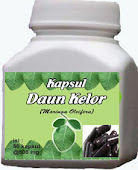 Kapsul Daun Kelor 500 mg