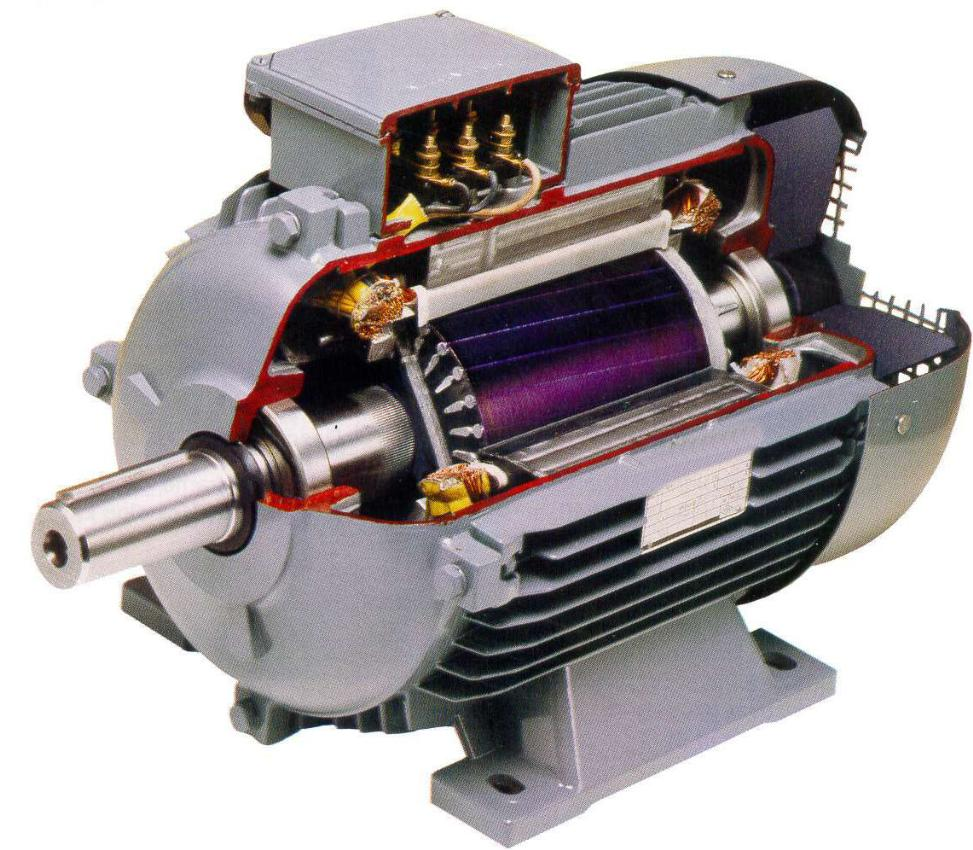 Ac motor kirloskar ac motor kit picture for Ac and dc motor
