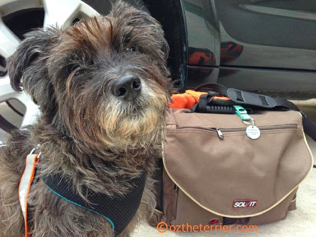 Packing for your dog is easy with the Travel Bag from Solvit Products