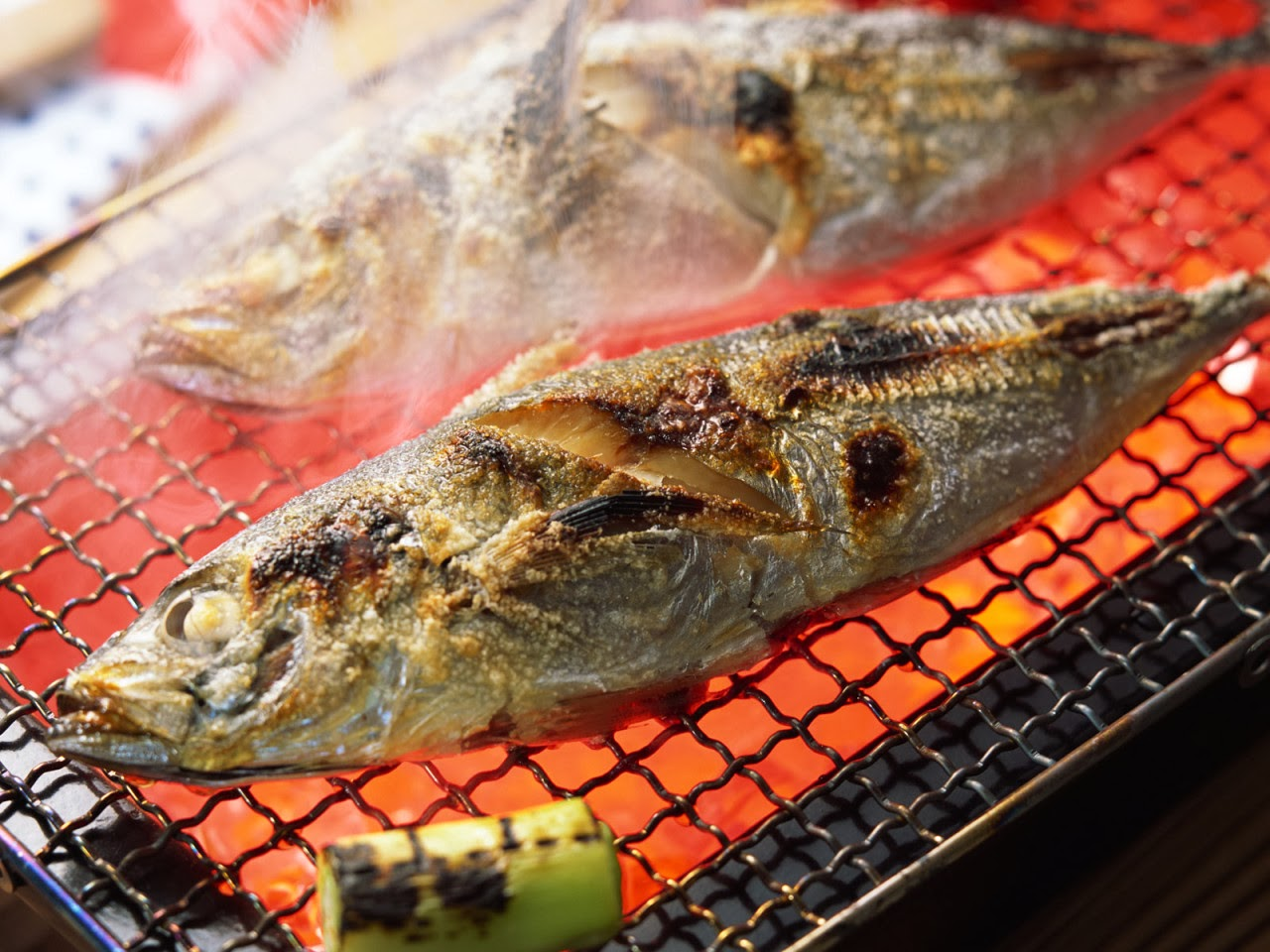 the-physics-of-cooking-meat-grilled-fish
