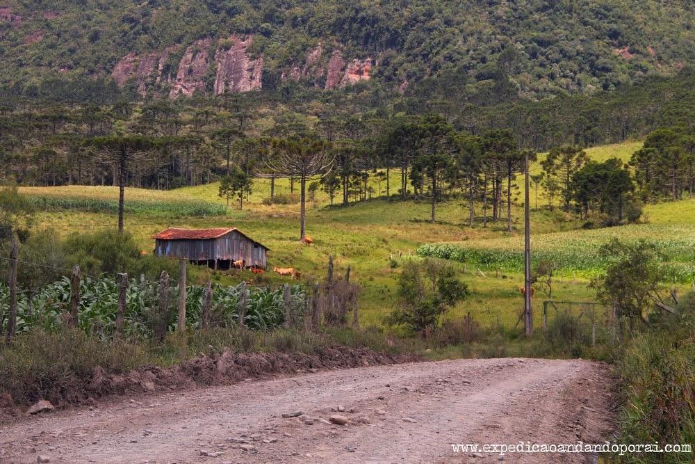 Estrada em Urubici na Serra Catarinense