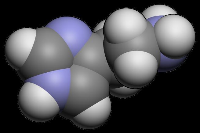 Histaminose Histaminintoleranz
