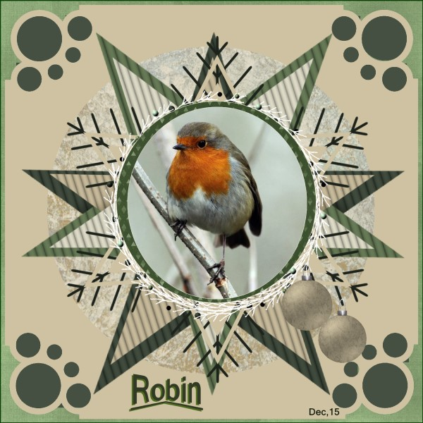 lo 2 - Dec.'15 - Robin..