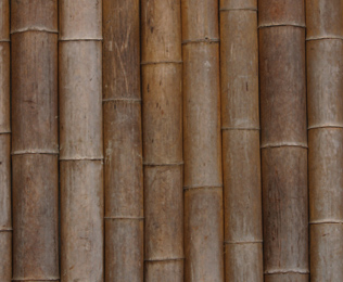 Bamboo Doors6