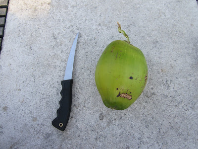 fillet knife and fresh green coconut