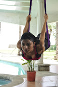 Avani Modi latest sizzling pics-thumbnail-4
