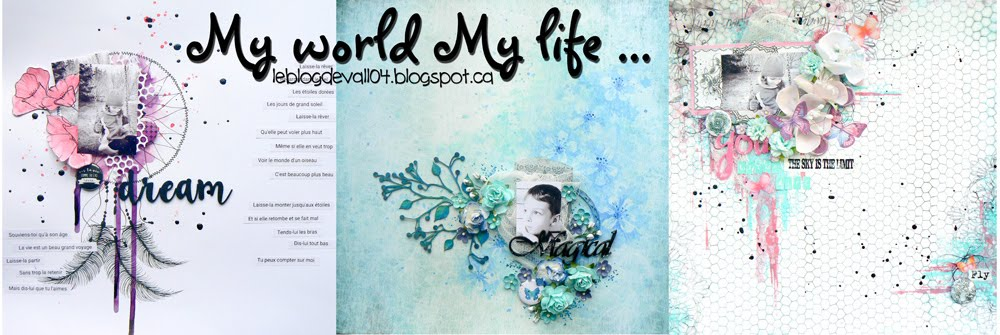 My world My life