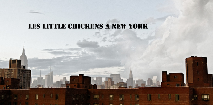 Les little chickens à New-York !