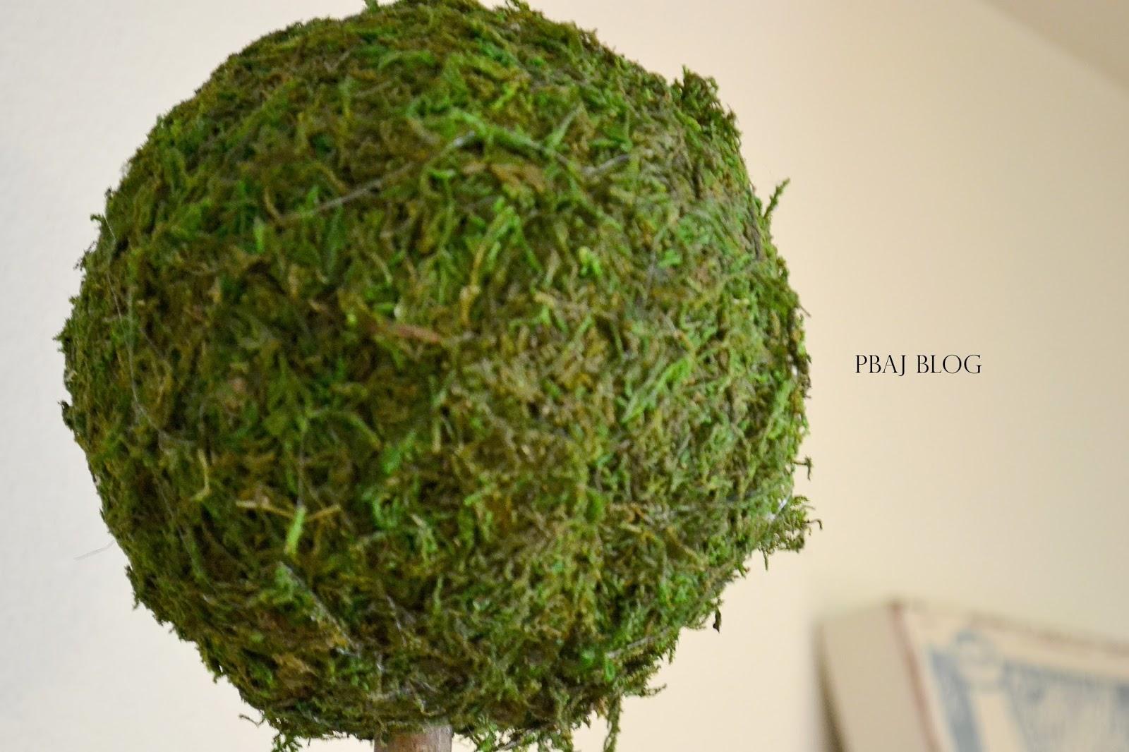 DIY Moss Topiary