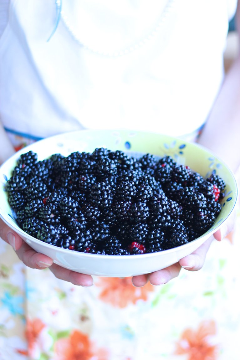 fresh blackberries, blackberry pie recipe, picked