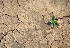 Bukan Air yang kuperlukan untuk Hidup