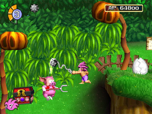 Tomba attacks an evil pig