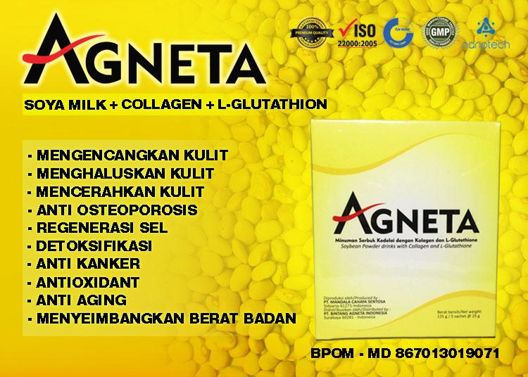 Agneta Soya Milk