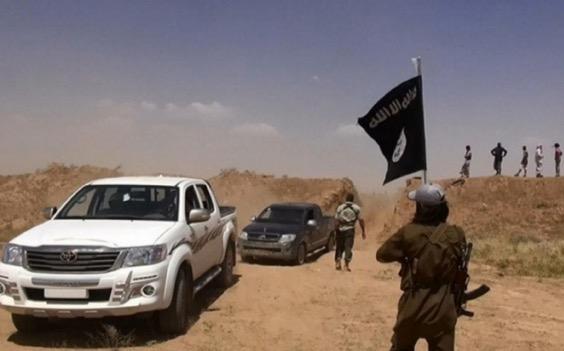 Organ Tahanan yang Masih Hidup Dibenarkan Ambil Oleh IS