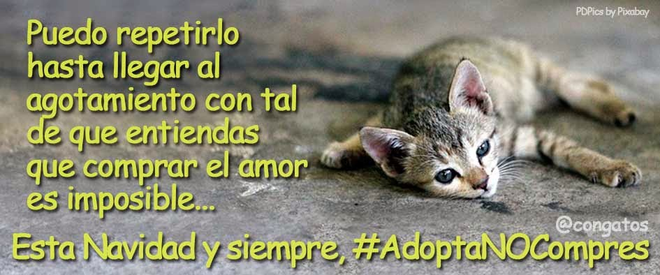 No compres animales, adopta