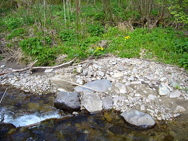 Čistá voda v horských potokoch