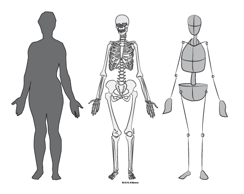 paint draw paint learn to draw drawing basics simplified skeleton