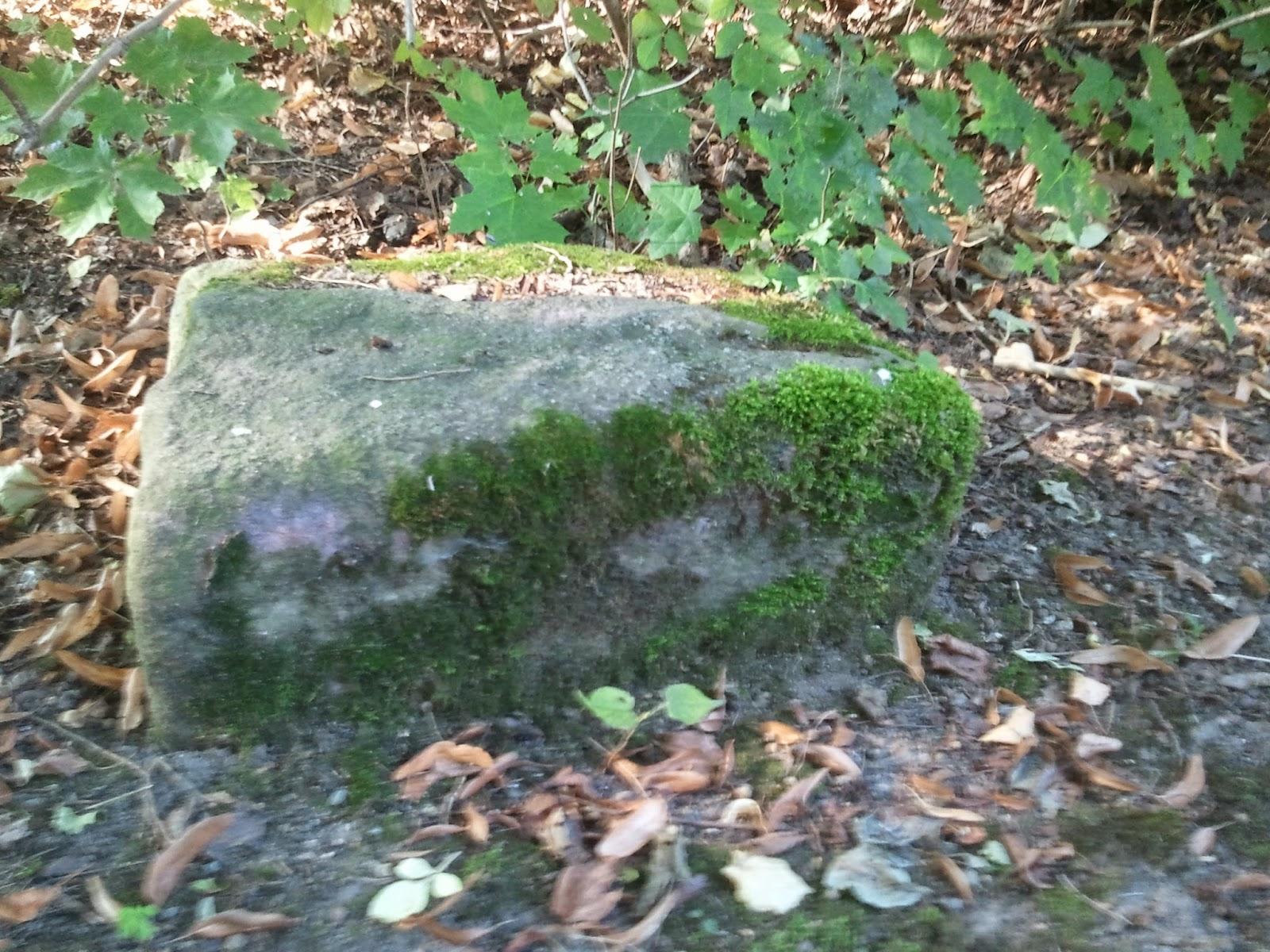 stone, picture, photo